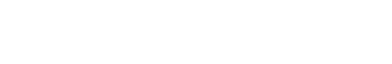 CareAcademy Logo White